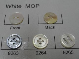 White Mop